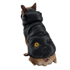 giubbotto cane